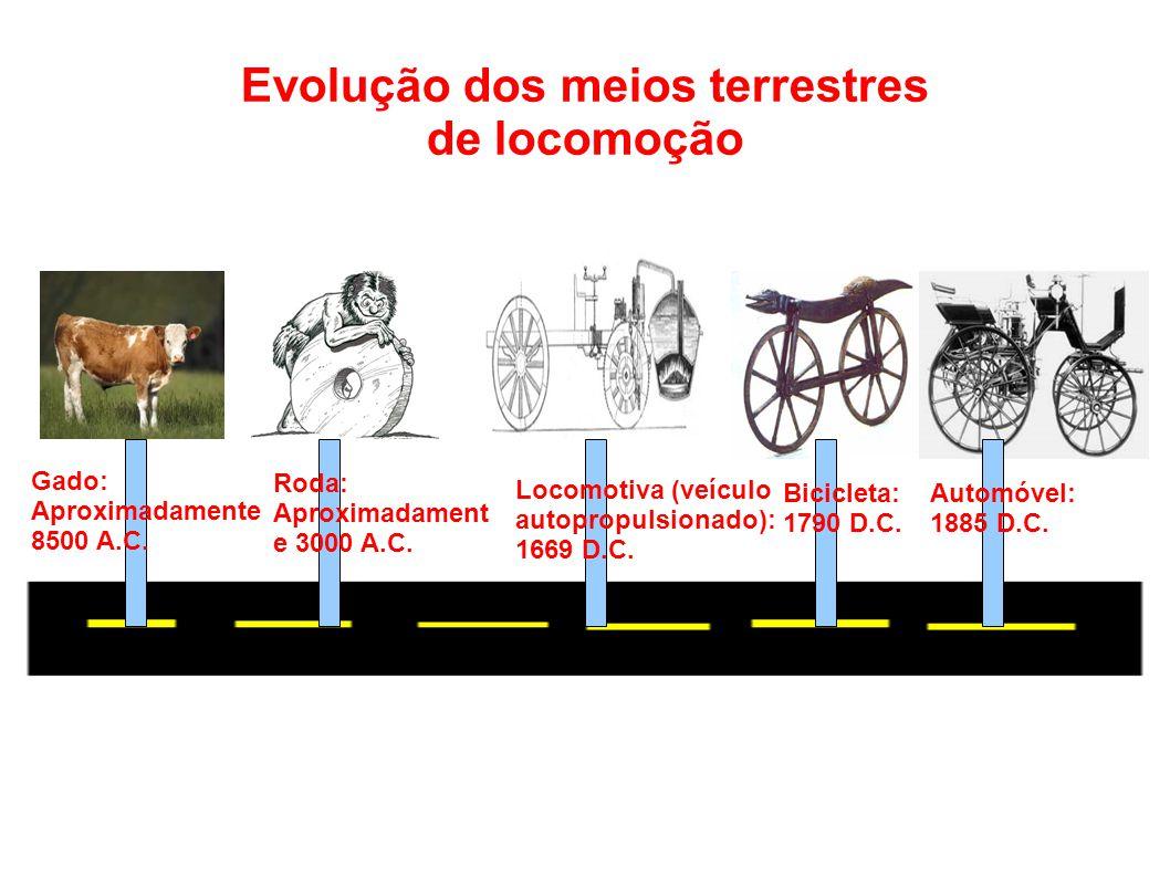 Evolução dos meios terrestres de locomoção