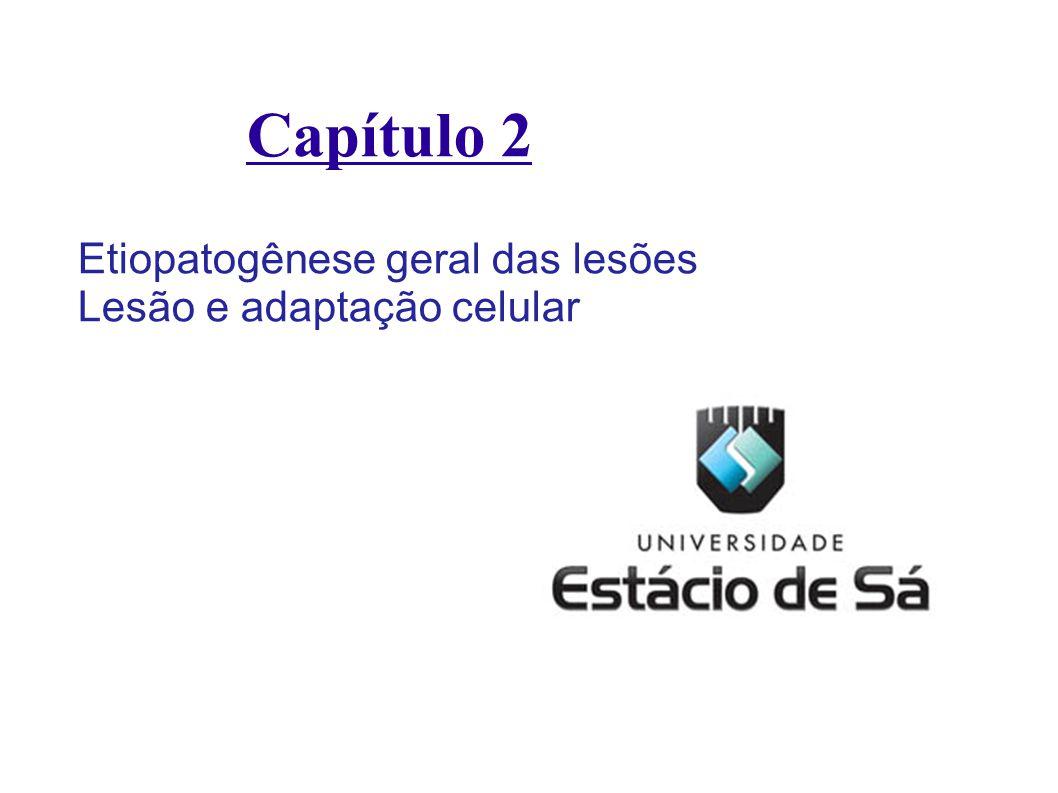 Capítulo 2 Etiopatogênese geral das lesões Lesão e adaptação celular