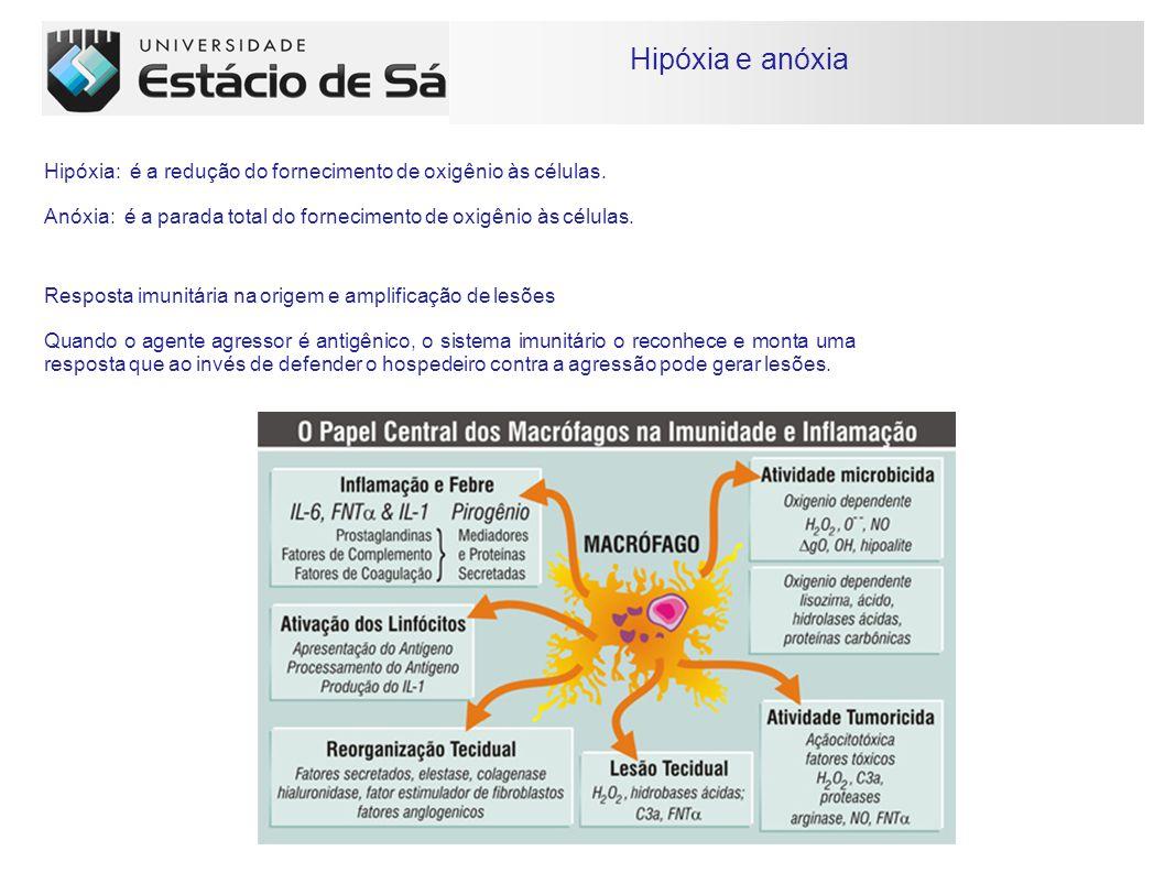 Hipóxia e anóxia Hipóxia: é a redução do fornecimento de oxigênio às células. Anóxia: é a parada total do fornecimento de oxigênio às células.