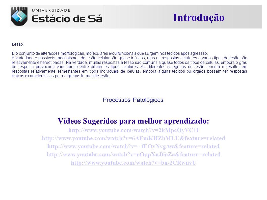 Vídeos Sugeridos para melhor aprendizado: