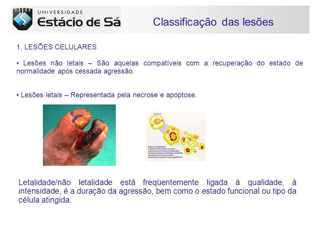 Classificação das lesões