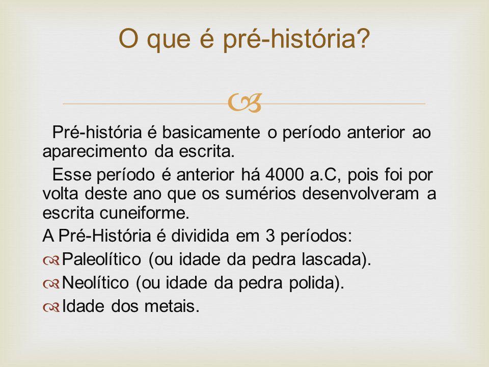 O que é pré-história Pré-história é basicamente o período anterior ao aparecimento da escrita.