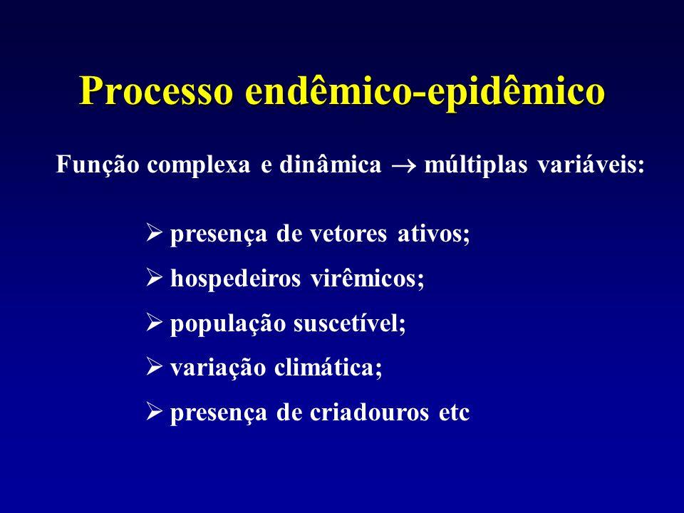 Processo endêmico-epidêmico