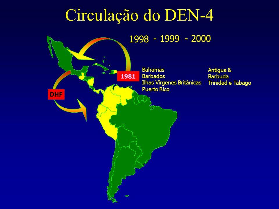 Circulação do DEN-4 1998 - 1999 - 2000 1981 DHF Bahamas