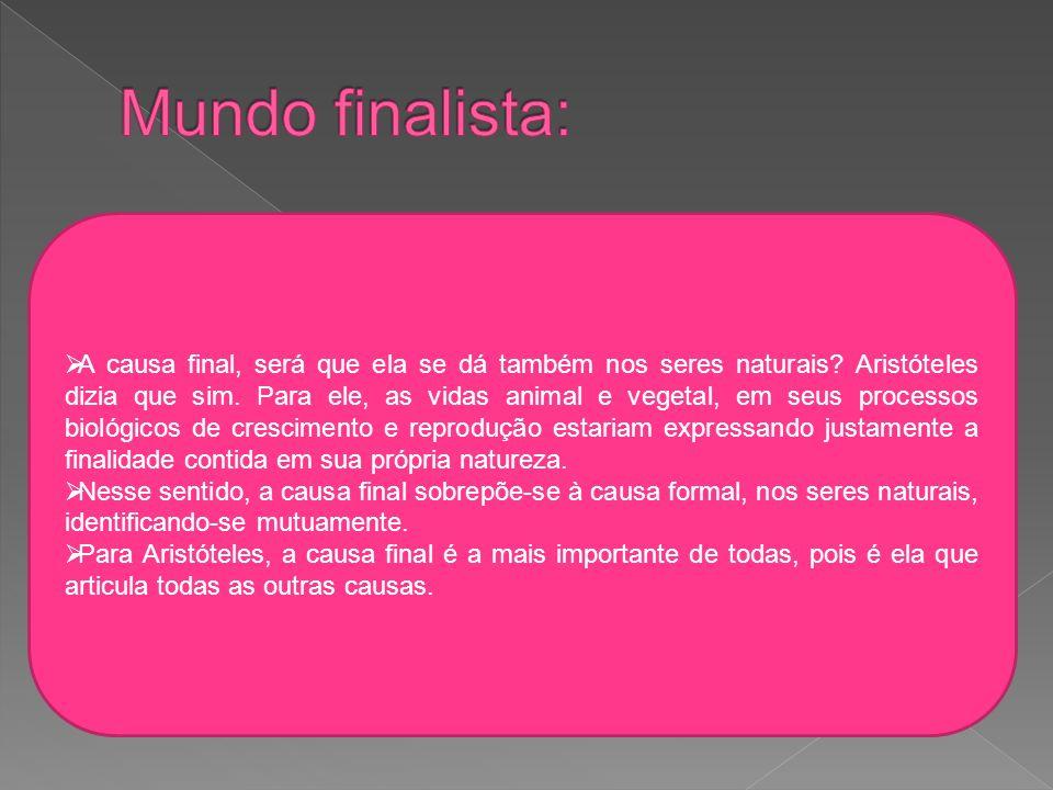 Mundo finalista: