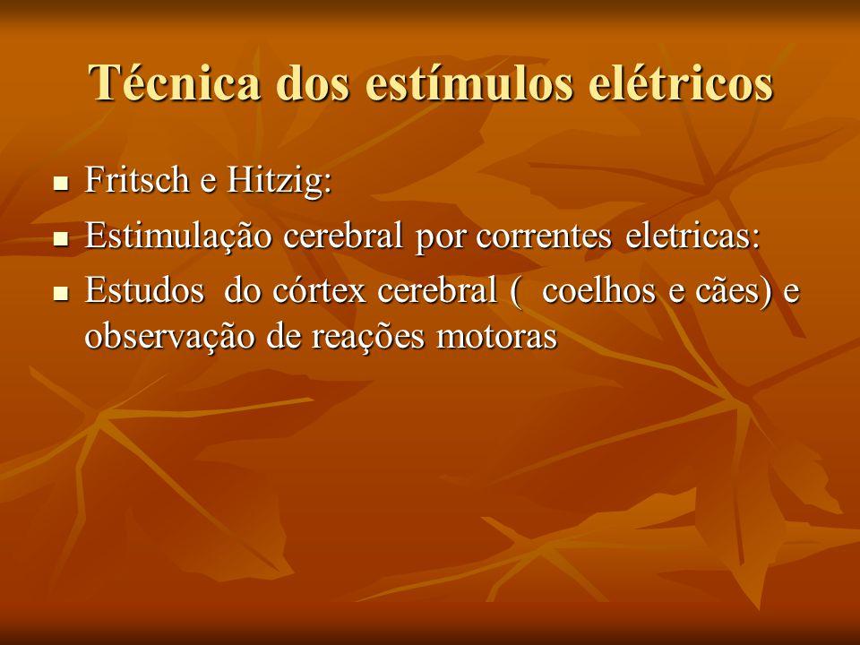 Técnica dos estímulos elétricos