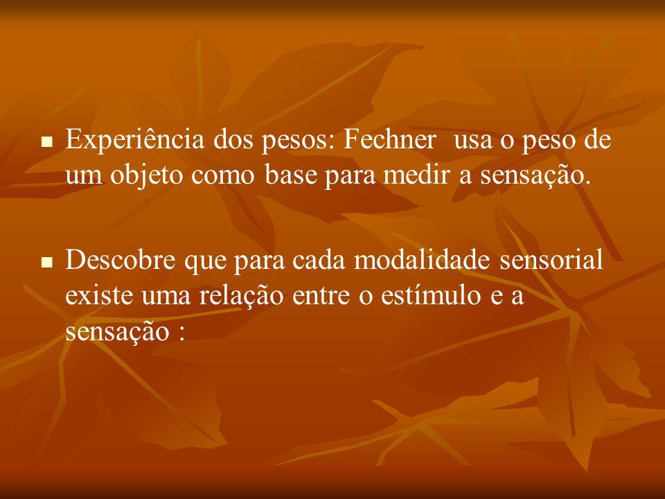 Experiência dos pesos: Fechner usa o peso de um objeto como base para medir a sensação.