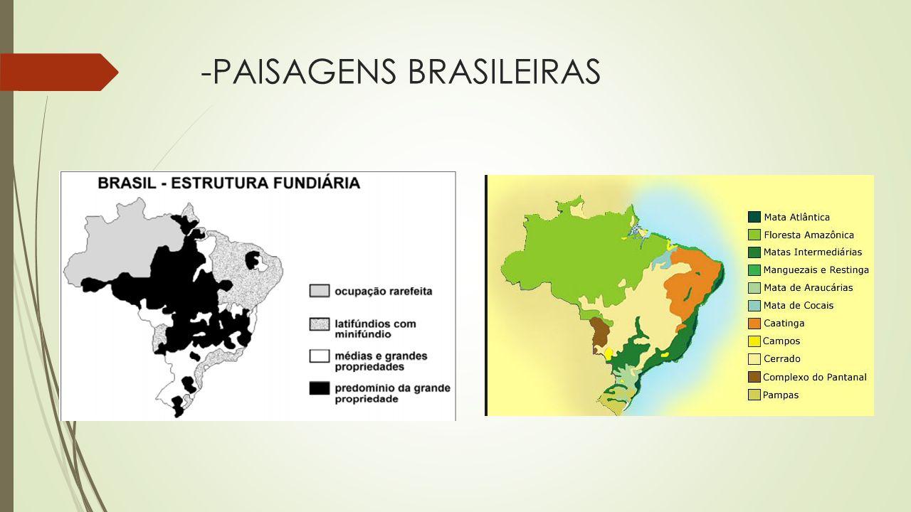 -PAISAGENS BRASILEIRAS
