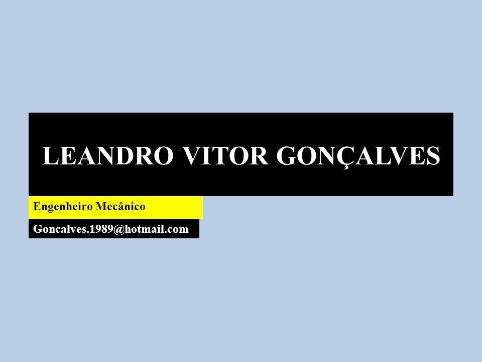 LEANDRO VITOR GONÇALVES