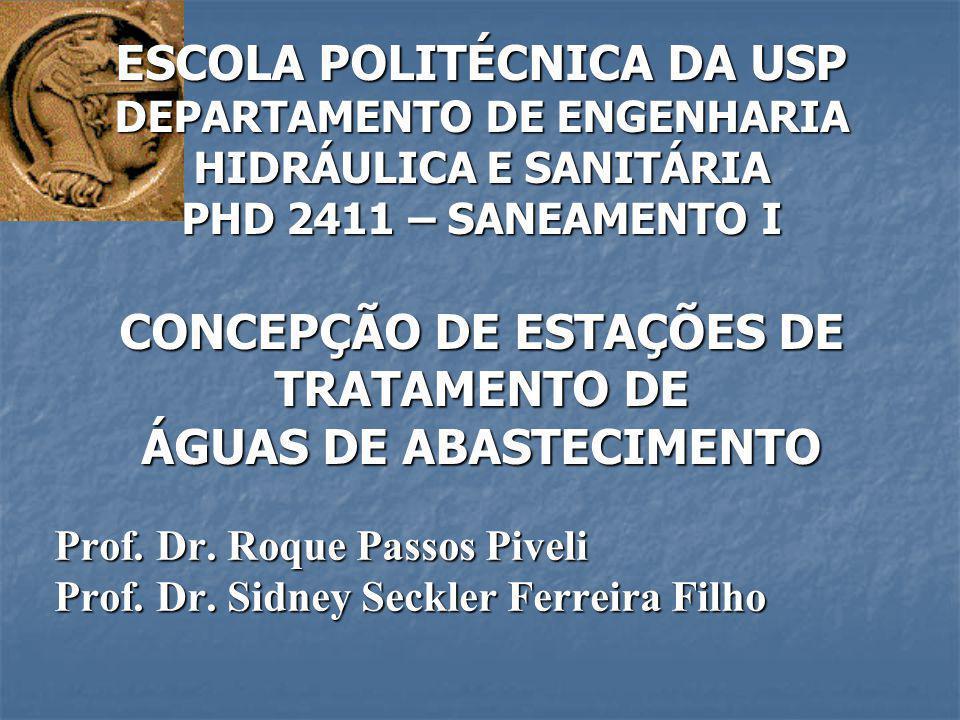Prof. Dr. Roque Passos Piveli Prof. Dr. Sidney Seckler Ferreira Filho