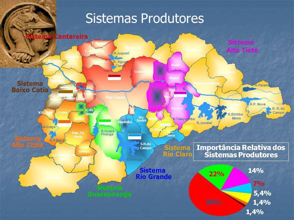 Importância Relativa dos Sistemas Produtores