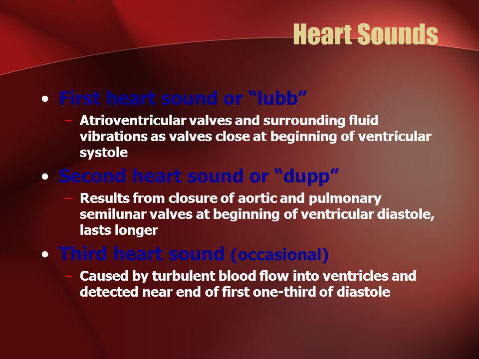 Heart Sounds First heart sound or lubb Second heart sound or dupp