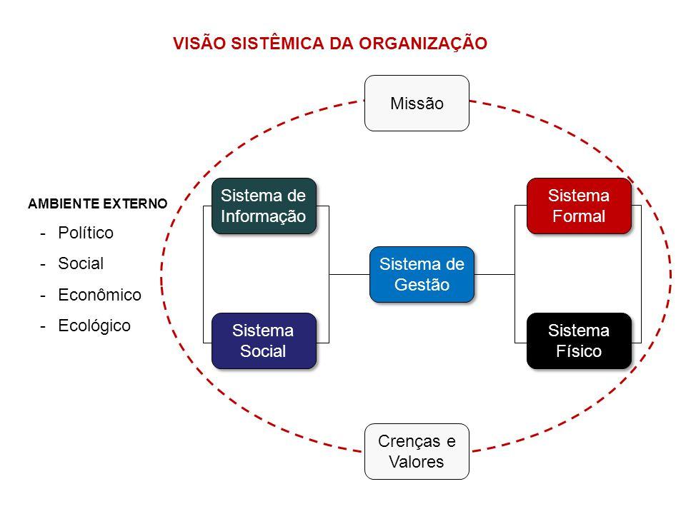 VISÃO SISTÊMICA DA ORGANIZAÇÃO