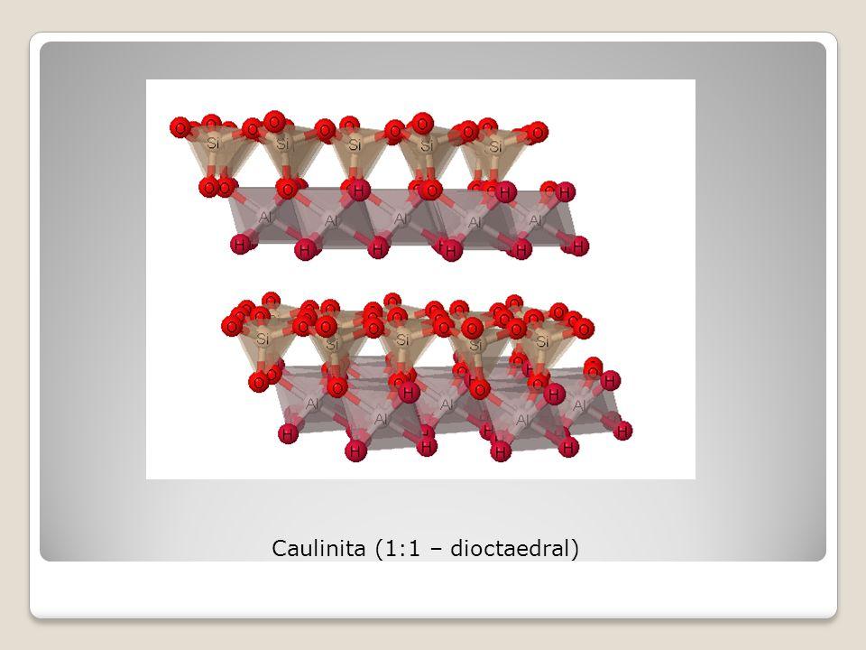 Caulinita (1:1 – dioctaedral)