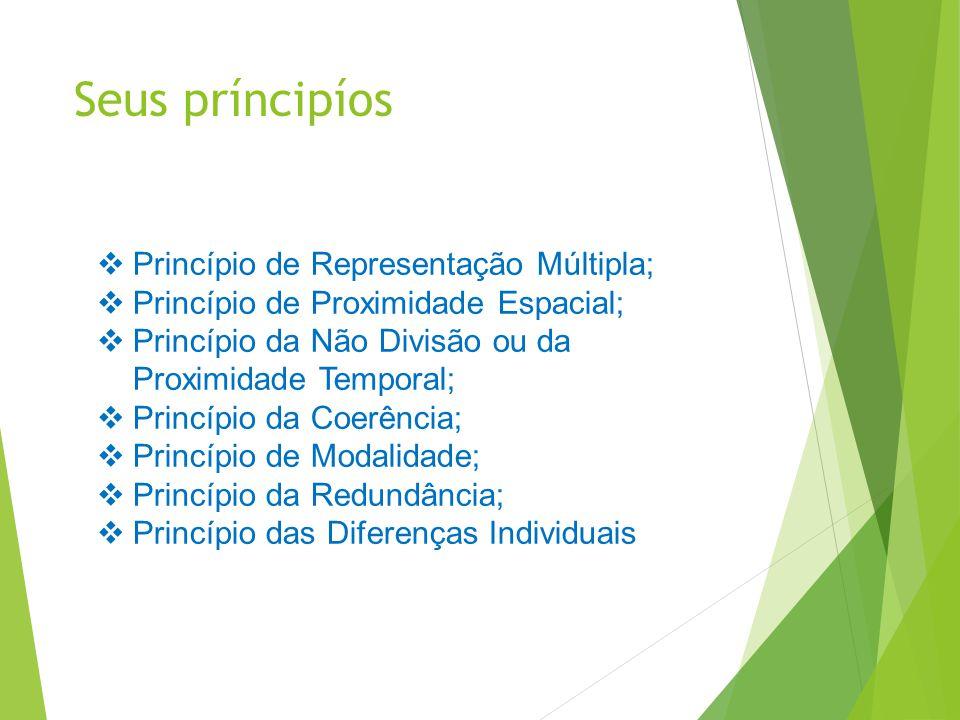 Seus príncipíos Princípio de Representação Múltipla;
