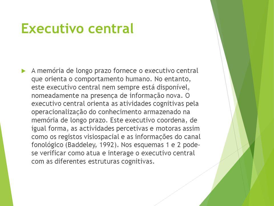 Executivo central