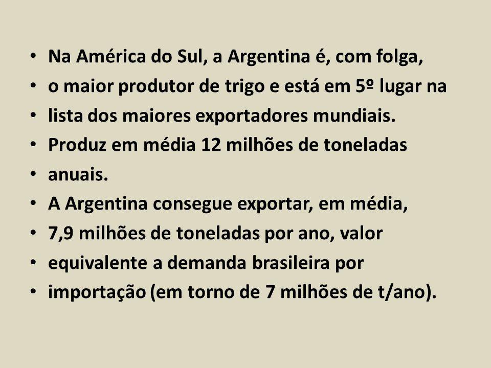 Na América do Sul, a Argentina é, com folga,