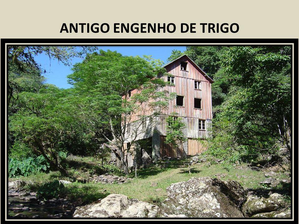 ANTIGO ENGENHO DE TRIGO