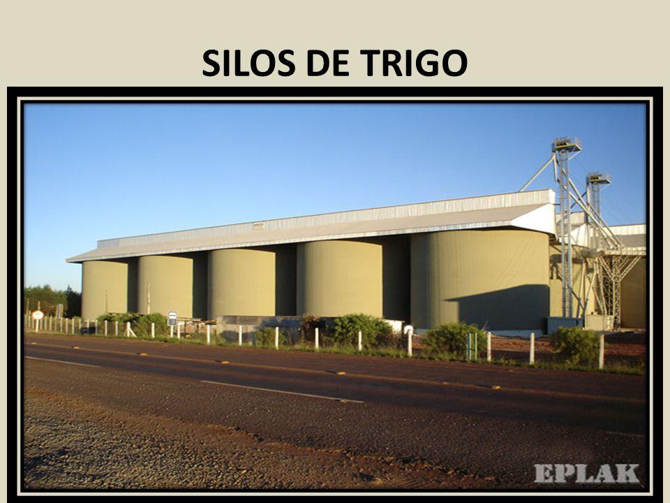 SILOS DE TRIGO