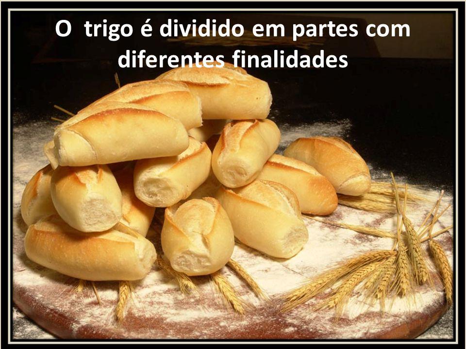 O trigo é dividido em partes com diferentes finalidades
