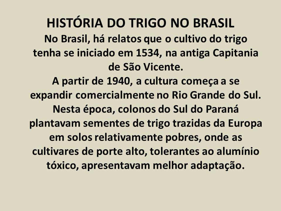 HISTÓRIA DO TRIGO NO BRASIL No Brasil, há relatos que o cultivo do trigo tenha se iniciado em 1534, na antiga Capitania de São Vicente.