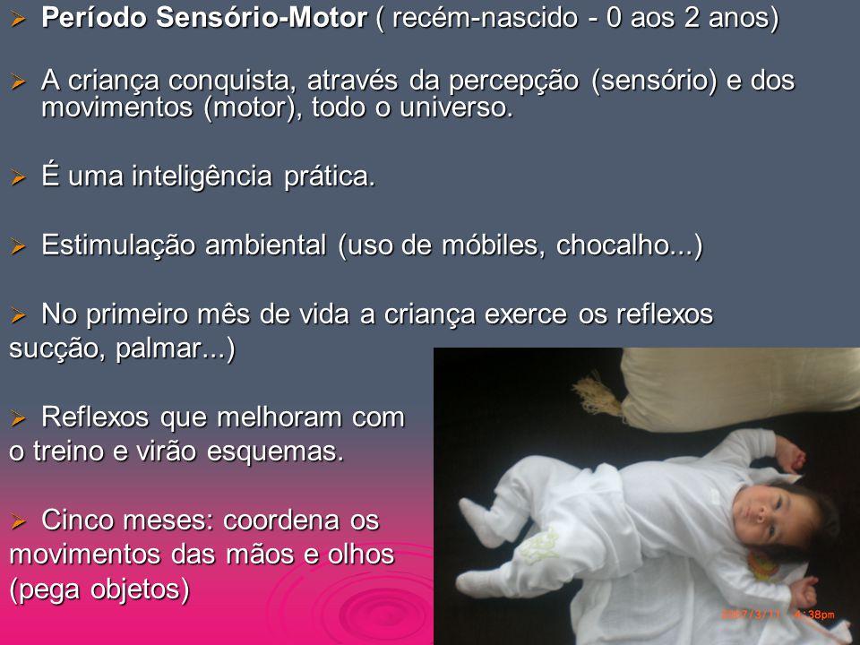 Período Sensório-Motor ( recém-nascido - 0 aos 2 anos)