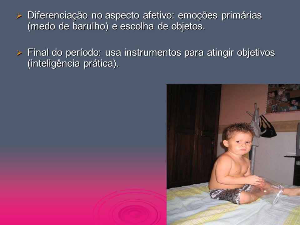Diferenciação no aspecto afetivo: emoções primárias (medo de barulho) e escolha de objetos.