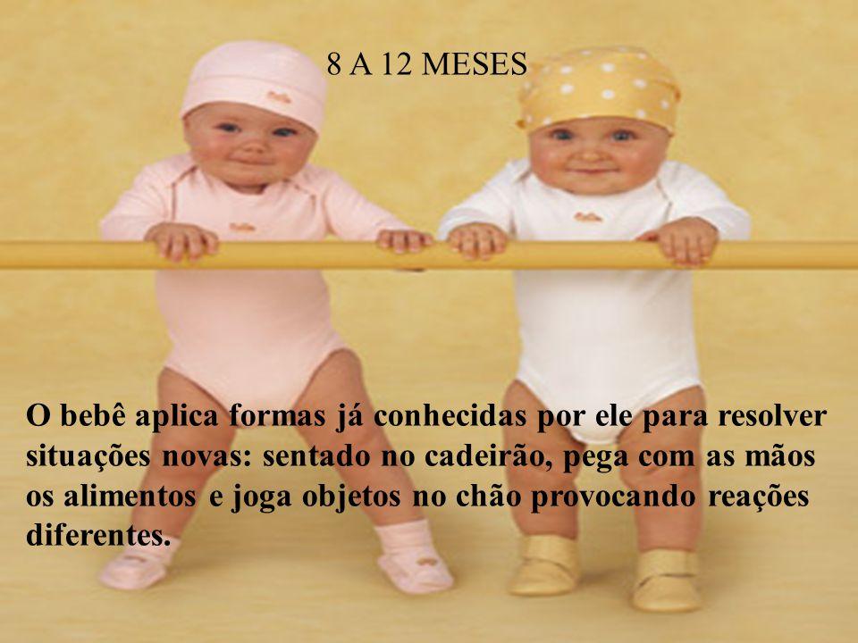 8 A 12 MESES.