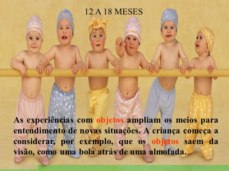12 A 18 MESES