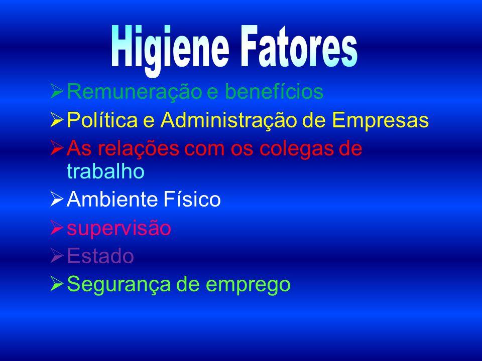 Higiene Fatores Remuneração e benefícios