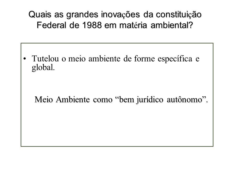 Quais as grandes inovações da constituição Federal de 1988 em matéria ambiental