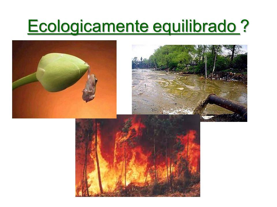 Ecologicamente equilibrado
