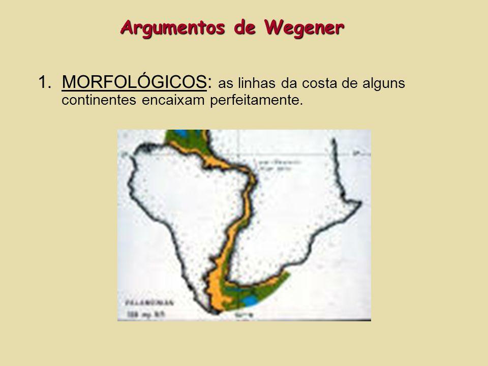 Argumentos de Wegener MORFOLÓGICOS: as linhas da costa de alguns continentes encaixam perfeitamente.