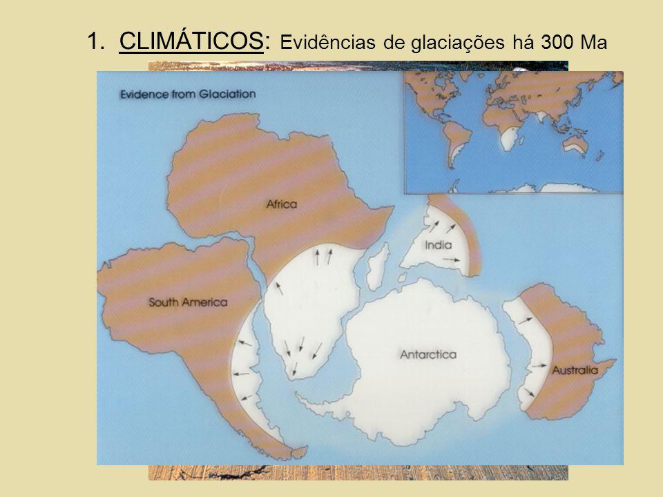 CLIMÁTICOS: Evidências de glaciações há 300 Ma