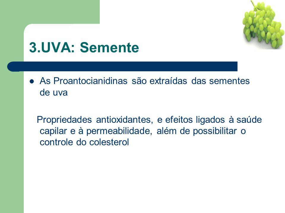 3.UVA: Semente As Proantocianidinas são extraídas das sementes de uva
