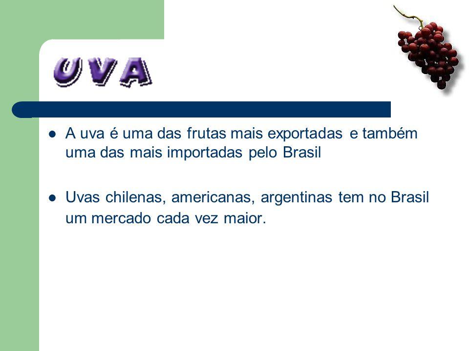A uva é uma das frutas mais exportadas e também uma das mais importadas pelo Brasil