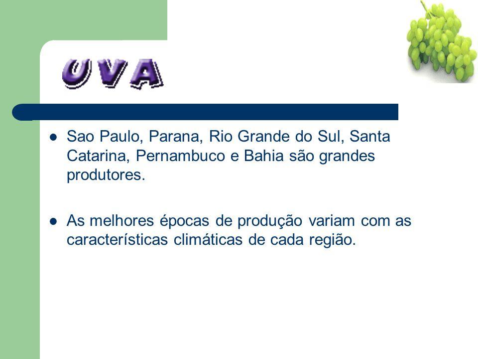 Sao Paulo, Parana, Rio Grande do Sul, Santa Catarina, Pernambuco e Bahia são grandes produtores.