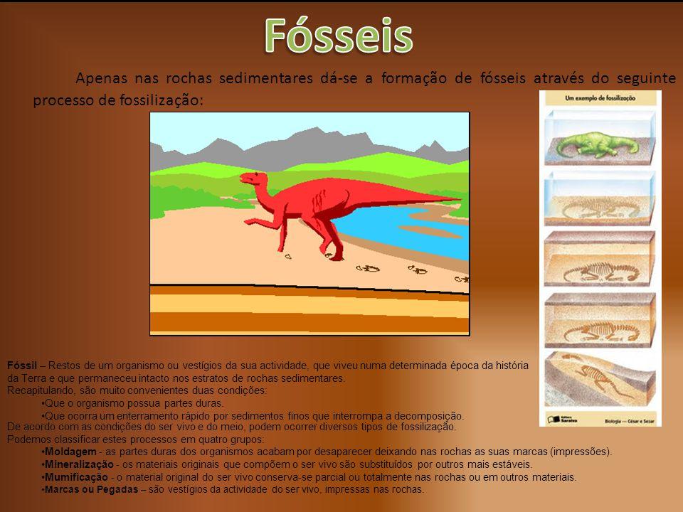 Fósseis Apenas nas rochas sedimentares dá-se a formação de fósseis através do seguinte processo de fossilização: