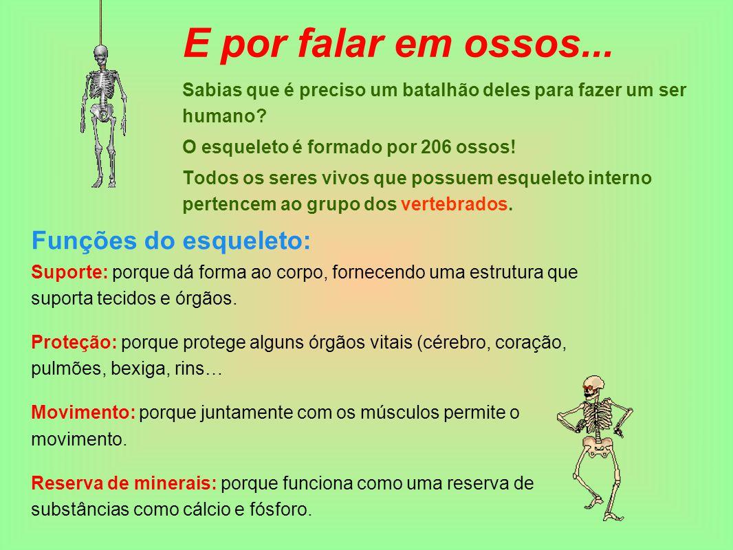 E por falar em ossos... Funções do esqueleto:
