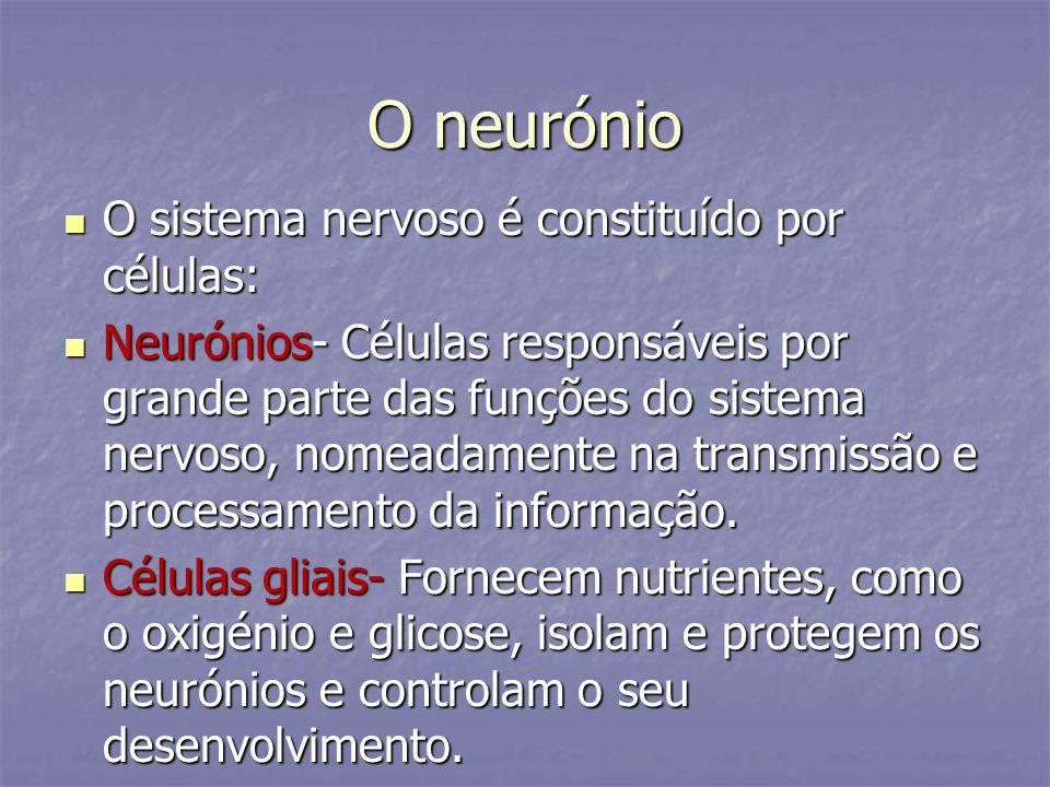 O neurónio O sistema nervoso é constituído por células: