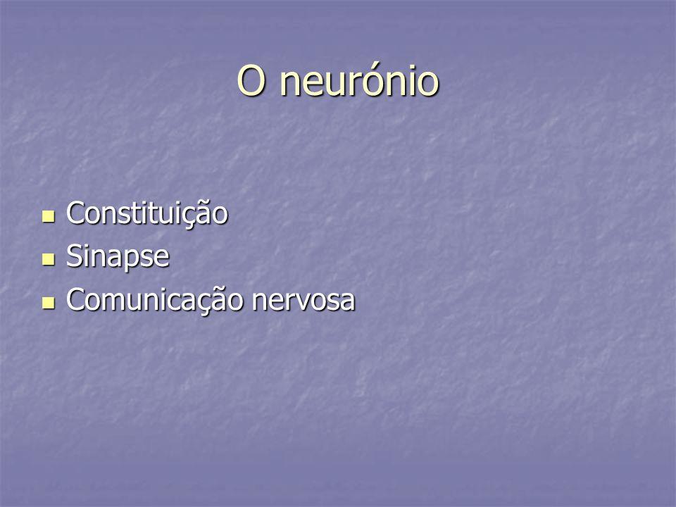 O neurónio Constituição Sinapse Comunicação nervosa