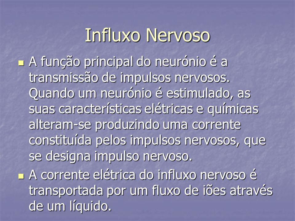 Influxo Nervoso