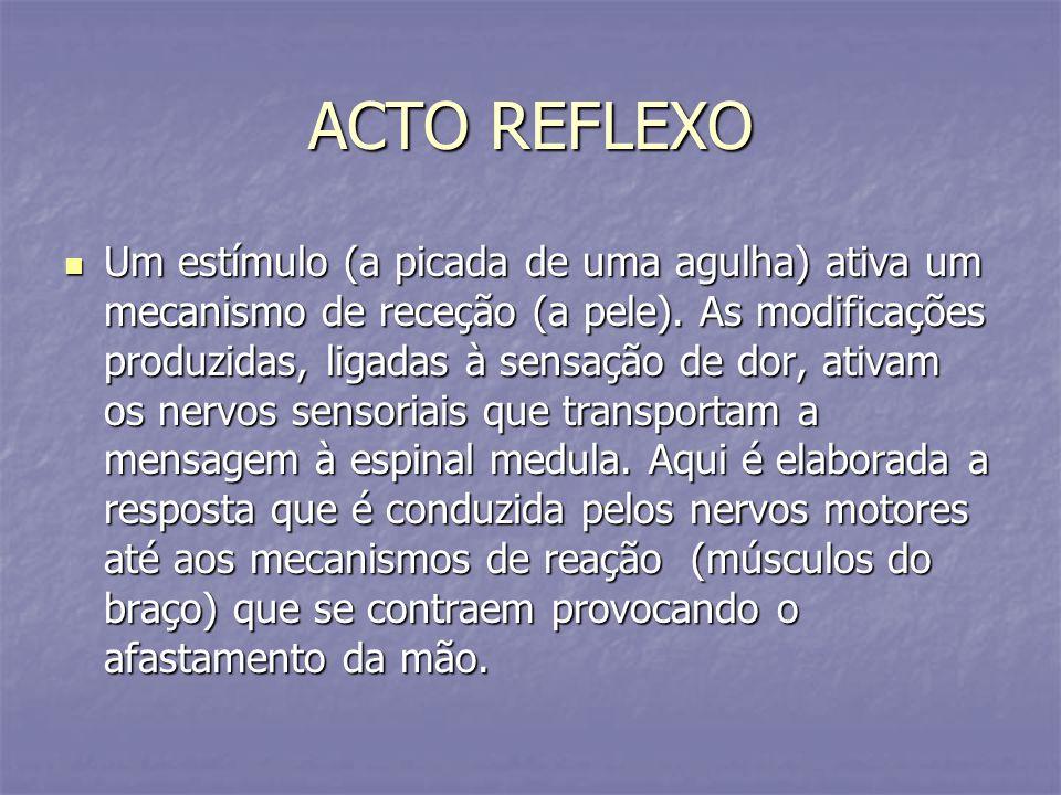 ACTO REFLEXO