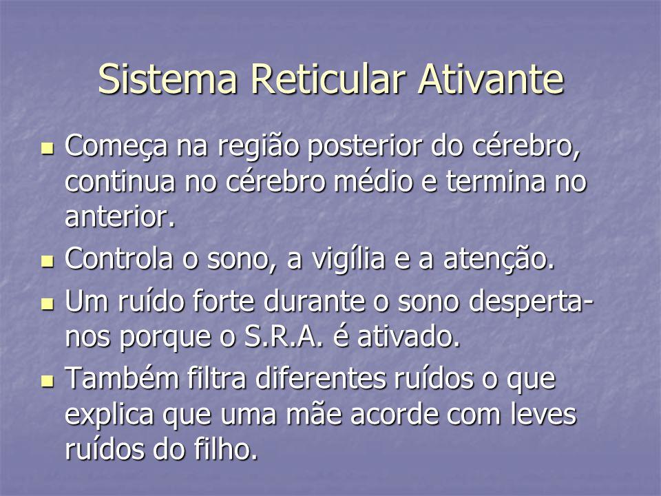 Sistema Reticular Ativante