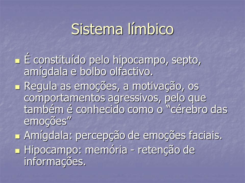 Sistema límbico É constituído pelo hipocampo, septo, amígdala e bolbo olfactivo.