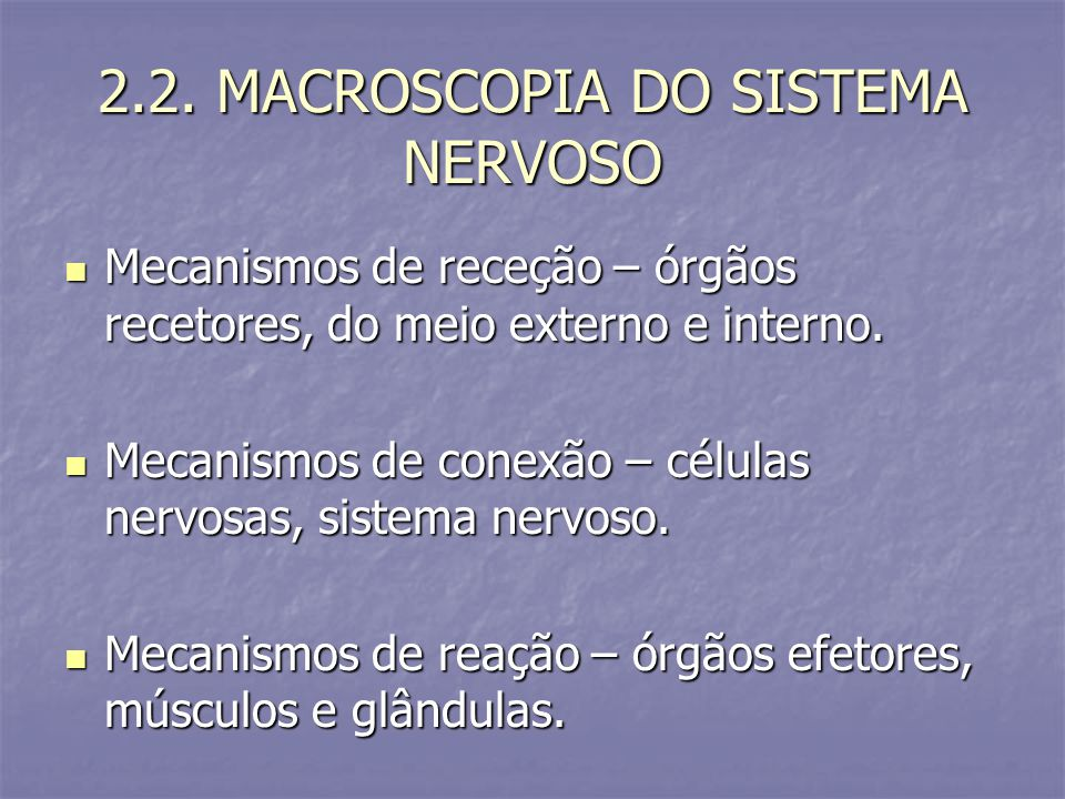 2.2. MACROSCOPIA DO SISTEMA NERVOSO