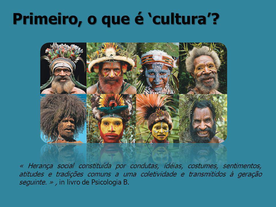 Primeiro, o que é 'cultura'