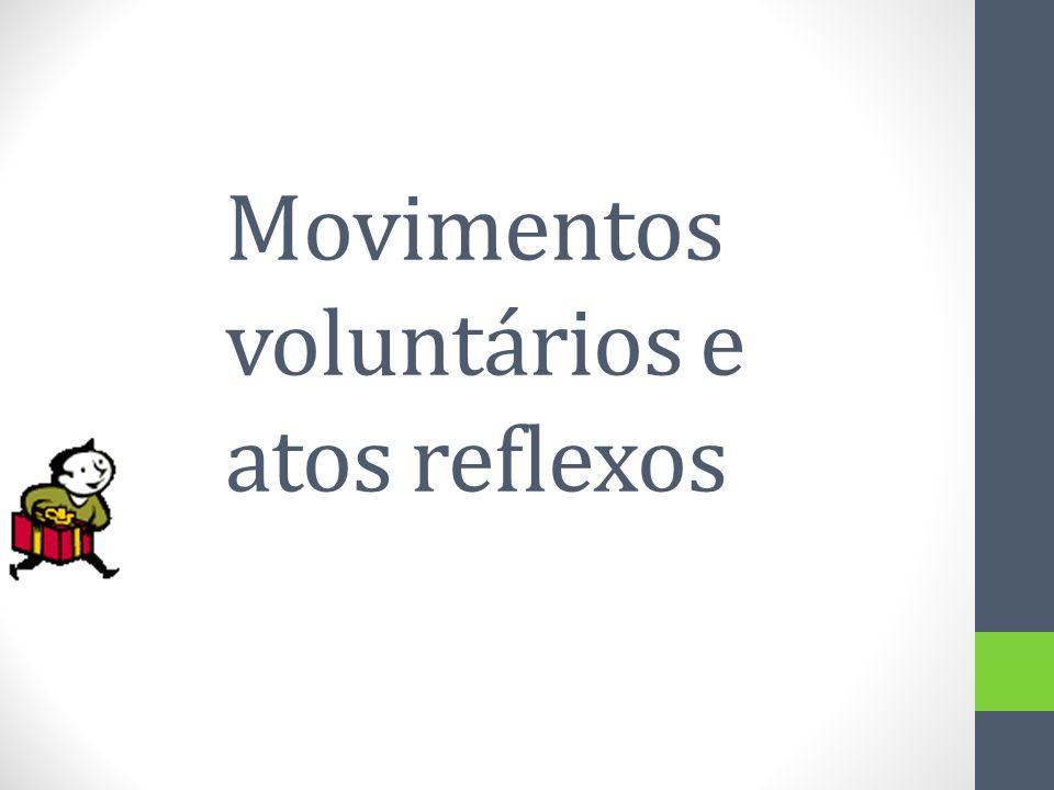Movimentos voluntários e atos reflexos