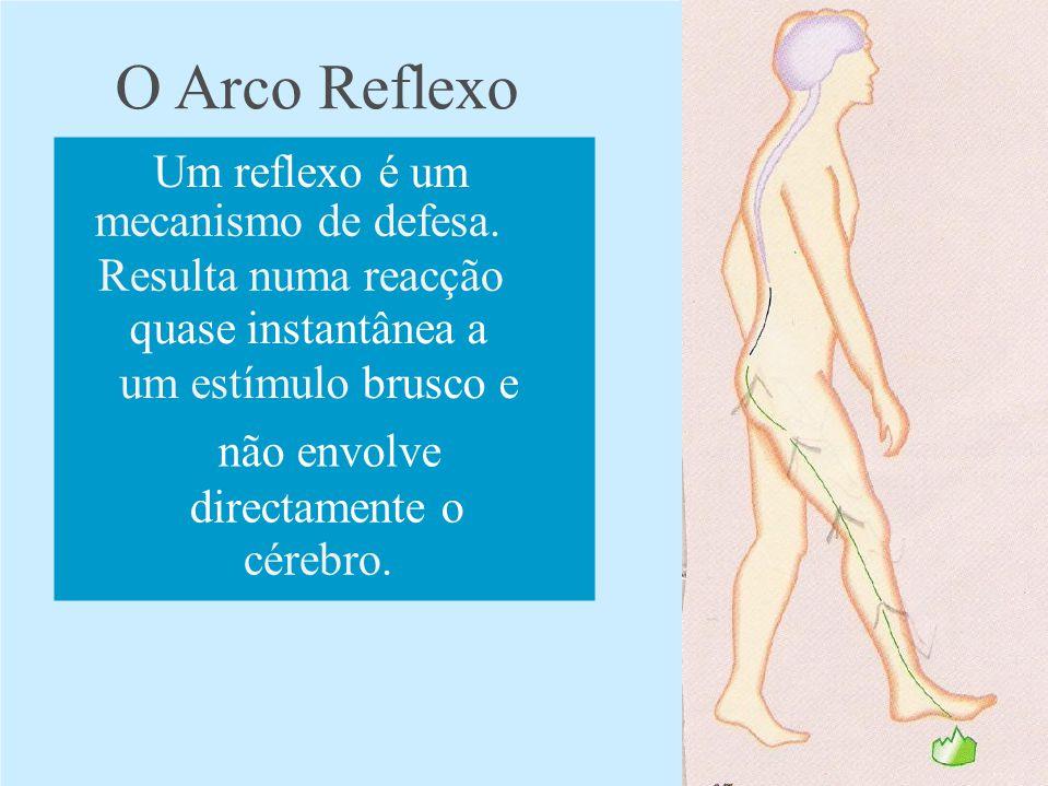 O Arco Reflexo Um reflexo é um mecanismo de defesa.