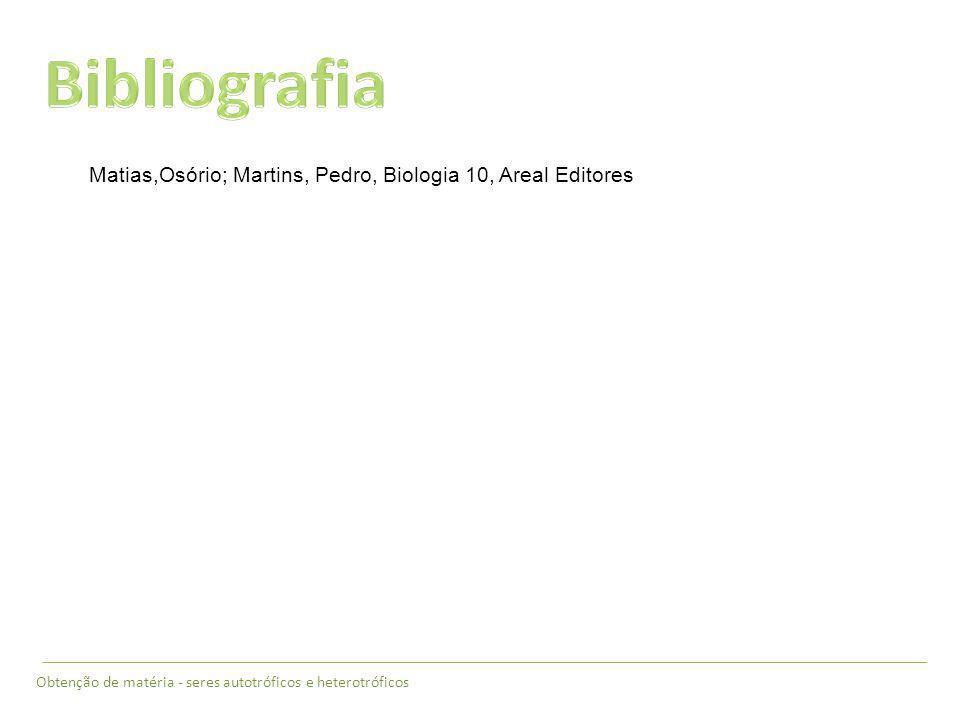 Bibliografia Matias,Osório; Martins, Pedro, Biologia 10, Areal Editores.